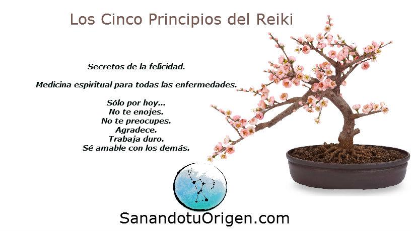 5_principios_reiki